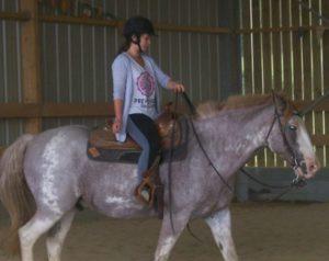 2012_foal_040