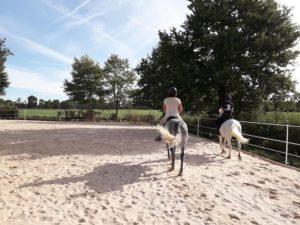 equitation_et_anglais_bordeaux