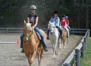 equitation_montpellier_0