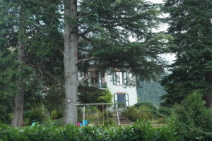 house_garden_1_-_copie
