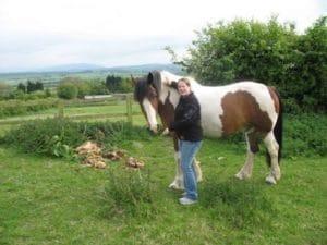 sejour_anglais_et_equitation_0