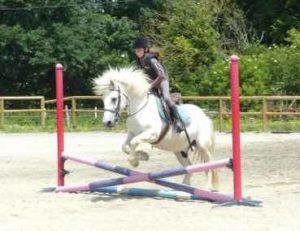 sejour_equitation_et_anglais_3