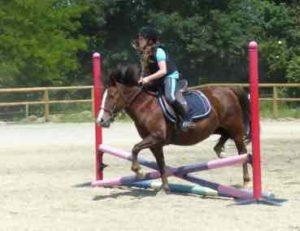 stage_anglais_et_equitation_paques_0