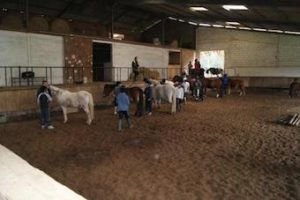stage_equitation_anglais_toulouse_vacances_hiver