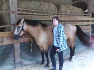 stage equitation Normandie