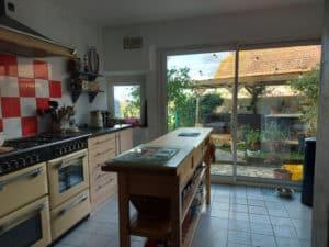 kitchen garden view (1)