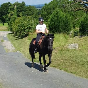 lily on horse